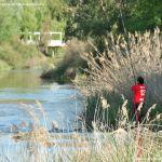 Foto Río Tajo en Fuentidueña 12