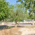 Foto Polideportivo Municipal Justo Terres 7
