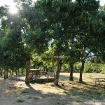 Foto Área Recreativa de la Ermita de Garganta de los Montes 1