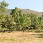 Foto Área Recreativa de la Ermita de Garganta de los Montes 6