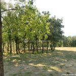 Foto Área Recreativa de la Ermita de Garganta de los Montes 9