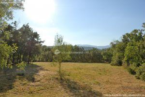 Foto Área Recreativa de la Ermita de Garganta de los Montes 12
