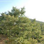 Foto Mirador del Valle 1