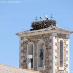 Foto Cigüeñas en Gascones 1
