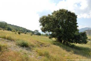 Foto Panorámicas Guadalix de la Sierra 23