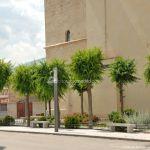 Foto Iglesia de San Juan Bautista de Guadalix de la Sierra 50