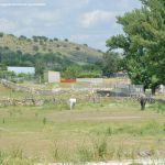 Foto Caballos en Guadalix de la Sierra 3