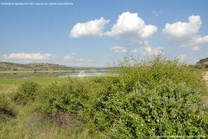 Foto Embalse de Pedrezuela de Guadalix de la Sierra 12