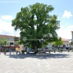 Foto Plaza Mayor de Guadarrama 23
