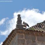 Foto Cigüeñas en Guadarrama 10
