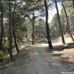 Foto Bosque La Jarosa 2
