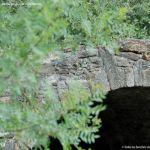 Foto Puente Viejo de Horcajo de la Sierra 4