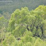 Foto Panorámicas Horcajuelo de la Sierra 4