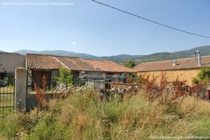 Foto Pajares en Lozoya 15