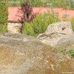 Foto Necrópolis Medieval de Sieteiglesias 9