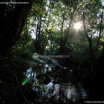 Foto Puente Romano en Sieteiglesias 11
