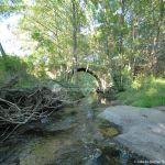 Foto Puente Romano en Sieteiglesias 16
