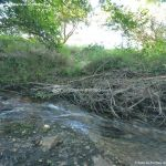 Foto Puente Romano en Sieteiglesias 17