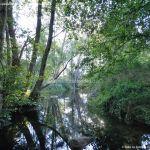 Foto Puente Romano en Sieteiglesias 18