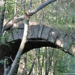 Foto Puente Romano en Sieteiglesias 32