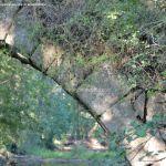 Foto Puente Romano en Sieteiglesias 34