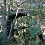 Foto Puente Romano en Sieteiglesias 36