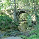 Foto Puente Romano en Sieteiglesias 41