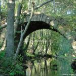 Foto Puente Romano en Sieteiglesias 42