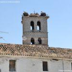 Foto Cigüeñas en Manzanares el Real 6