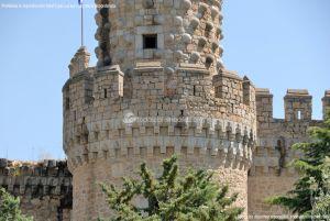 Foto Castillo de Manzanares 10