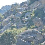 Foto Parque Regional de la Pedriza 72