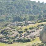 Foto Parque Regional de la Pedriza 76