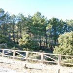 Foto Parque Regional de la Pedriza 81