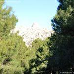 Foto Parque Regional de la Pedriza 133