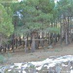 Foto Parque Regional de la Pedriza 134