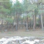 Foto Parque Regional de la Pedriza 135