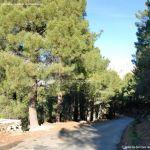 Foto Parque Regional de la Pedriza 137