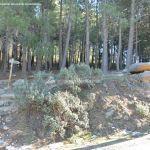 Foto Parque Regional de la Pedriza 163
