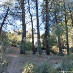 Foto Parque Regional de la Pedriza 167
