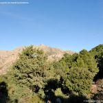 Foto Parque Regional de la Pedriza 169