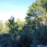 Foto Parque Regional de la Pedriza 180