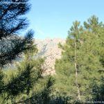 Foto Parque Regional de la Pedriza 183