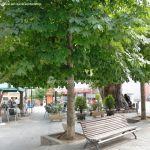 Foto Plaza del Álamo 9