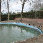 Foto Patos en Moraleja de Enmedio 1