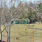 Foto Pabellón Polideportivo Municipal de Navacerrada 6