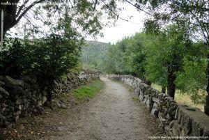 Foto Camino al Molino en Navalafuente 2