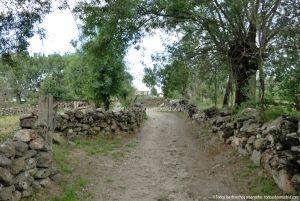 Foto Camino al Molino en Navalafuente 5