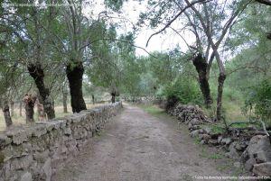 Foto Camino al Molino en Navalafuente 6