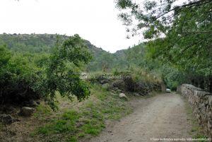 Foto Camino al Molino en Navalafuente 7