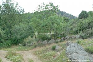Foto Camino al Molino en Navalafuente 11